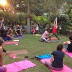 Yoga TTC Thailand